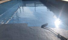 屋上防水⑥